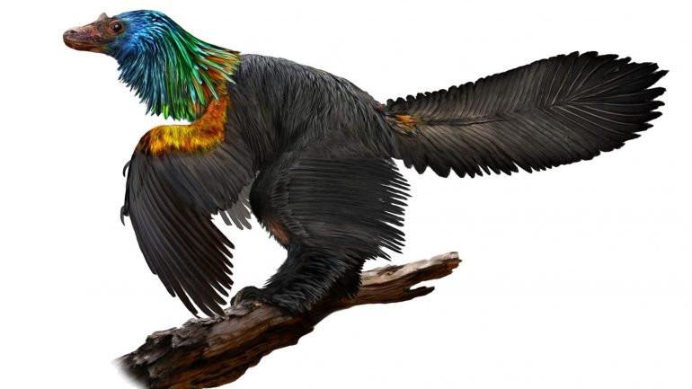 Caihong, el dinosaurio arco iris de China