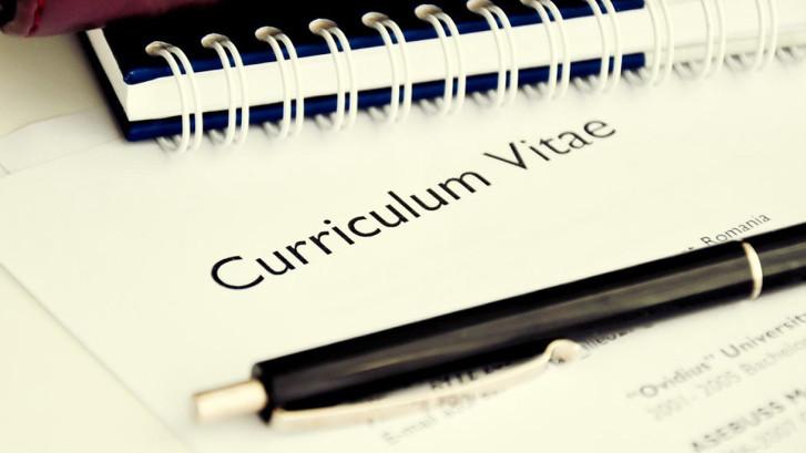 Curriculumvita