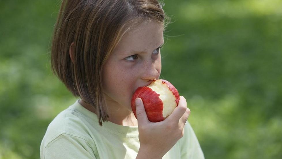 Manzanafrutaalimentacion