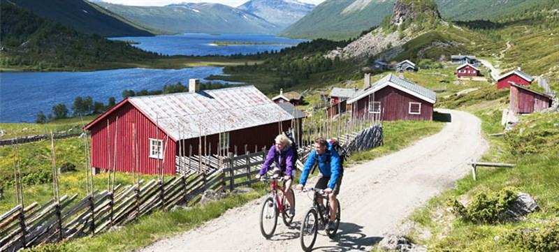 Norueganoruegos