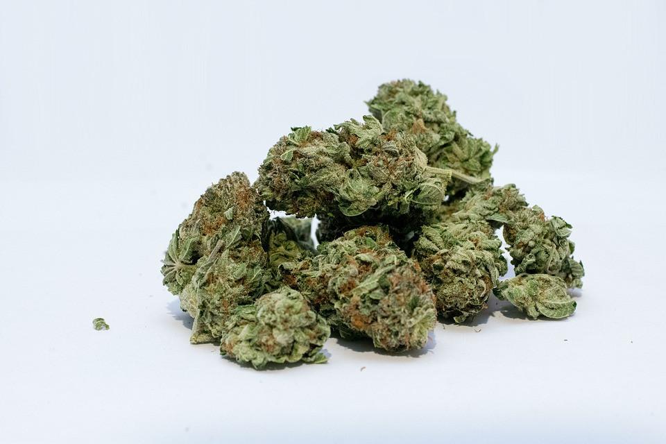 Marihuana cogollos
