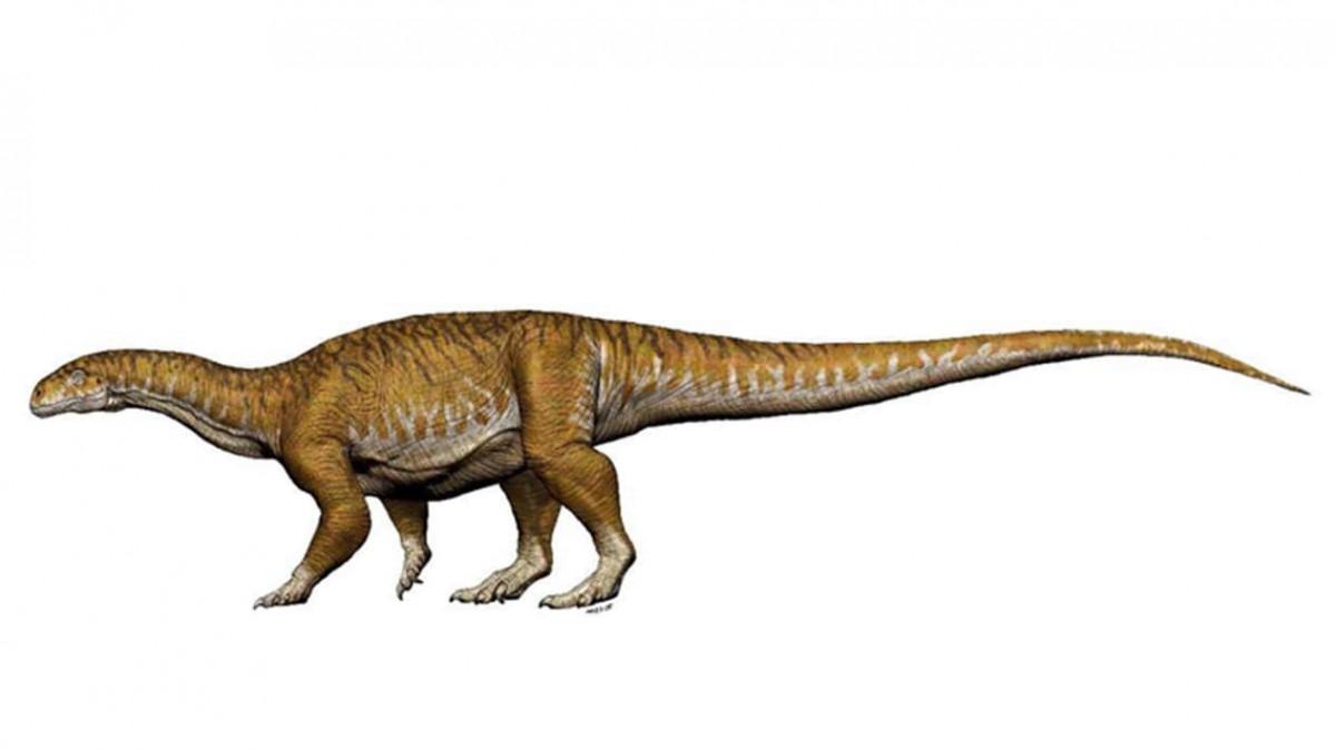 Dinosaurio gigante en Argentina
