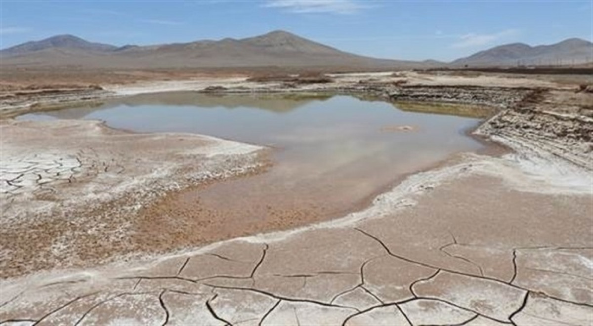 Desierto de Atacama tras las primeras lluvias en siglos