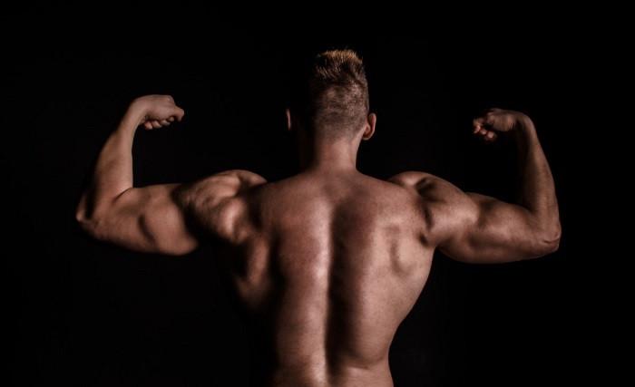 Mu00fasculos cuerpo masculino