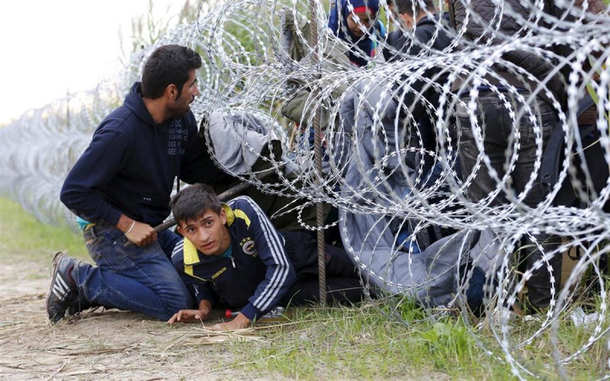 Refugiados4 1